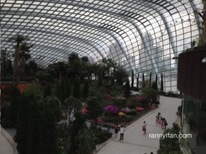 Flower Dome @ Gardens by the Bay