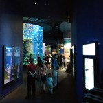 suasana SEA Aquarium
